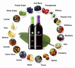 Monavie_fuits_berries_active2