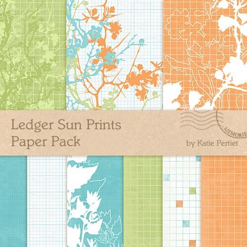Digi Paper Ledger Sun