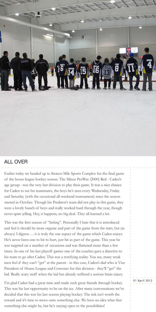 WebPLW14Hockey
