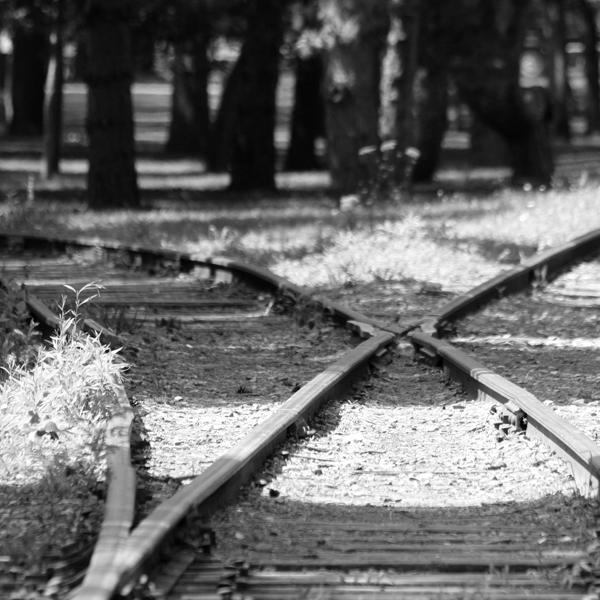 WebMBR_12x12BW_Tracks